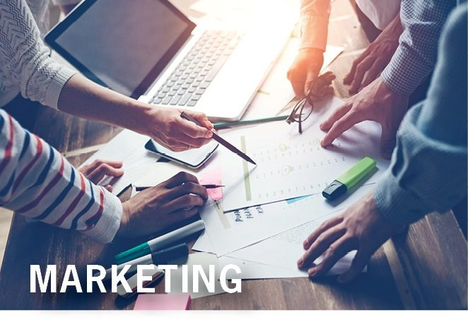 MARKETING Our Company Page