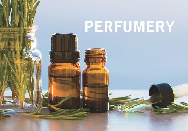 PERFUMERY Fragrance Page